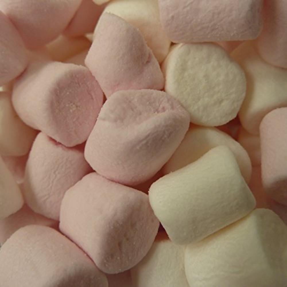 Twist Ingredients Mini Marshmallows 1kg