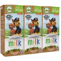 Image of Paw Patrol From 2 Years Chocolate Milk 3 x 200ml